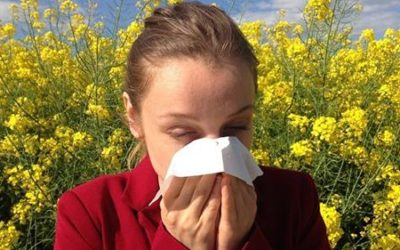 Essere allergici in Liguria